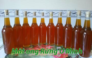 Mật ong Rừng U Minh Hạ Cà Mau