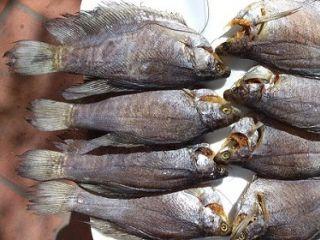 Cách làm khô cá sặc bổi ngon tại nhà