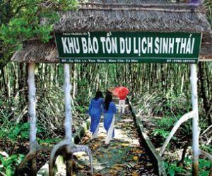Du lịch sinh thái Cà Mau Lý tưởng - Phân trường 184